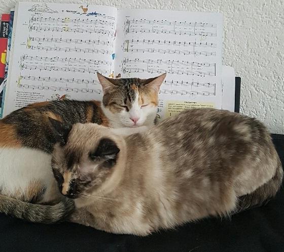 Maika & Maila