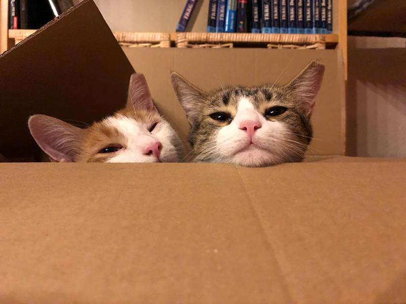 Gianni & Mia